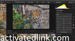 Luminar Photo Editor 4.3.0.7119 Crack Free Download 2021