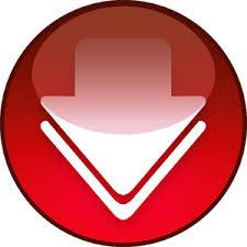 Fast Video Downloader 4.0.0.16 Crack With Registration Key
